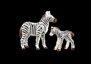 Zebra s mládětem 7898